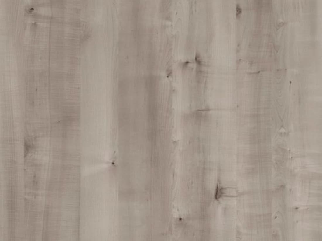 Grey Birch 1